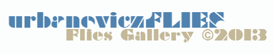 urbanoviczFLIES GALLERY